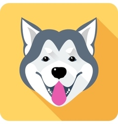 Alaskan Malamute dog icon flat design vector image
