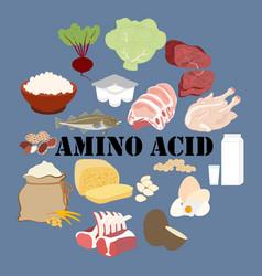 Amino acid nutrient rich food vector