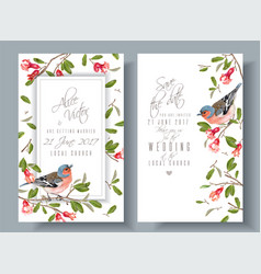 Finch pomegranate branch cards vector