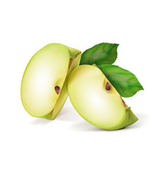 Green apple fruit is cut into quarters vector