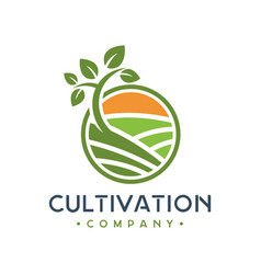 green plant cultivation logo design vector image