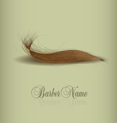 Hair logo for your design vector