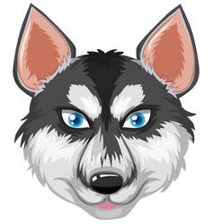 Head of a husky vector