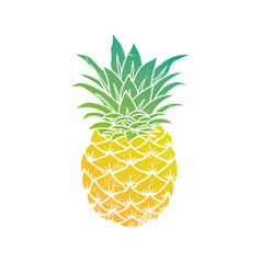 Pineapple modern vector