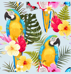 seamless macaw and flowers vector image