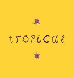 Summer tropical design for banner or flyer vector