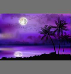 tropical beach at night vector image