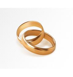 Two interlocking golden wedding rings vector