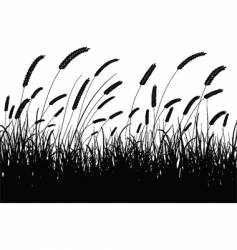 Wheat silhouette vector