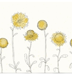 Sunflower Floral background vector image vector image
