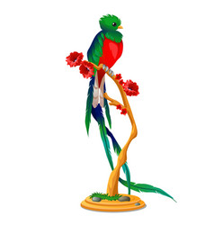beautiful bird of paradise sitting on a wooden vector image