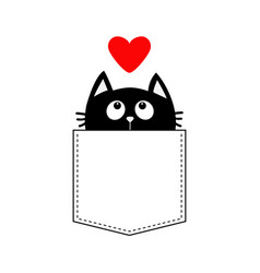 black cat in pocket looking up to red heart vector image