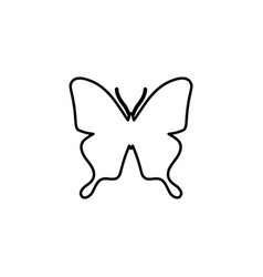 butterfly line icon vector image