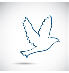 dove on gray background vector image