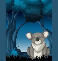 Koala in night scene vector