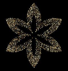 luxury golden flower on black gold glittering vector image