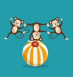 Monkeys circus show icons vector