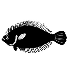 Silhouette of flounder vector image