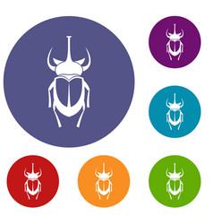 Weevil beetle icons set vector