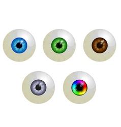 Set of eyeballs vector