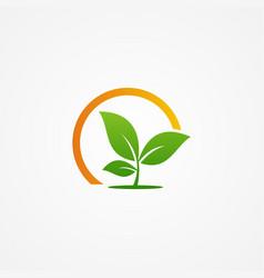 plant seed organic green logo vector image vector image
