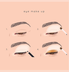 eye make up tutorial how to apply eyeshadow vector image vector image