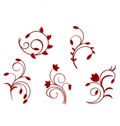 simplicity floral decorations vector image