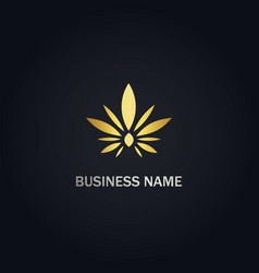Cannabis leaf eco gold logo vector