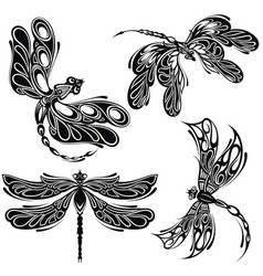 elegant dragonfly silhouettes vector image