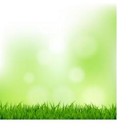 Grass and bokeh vector