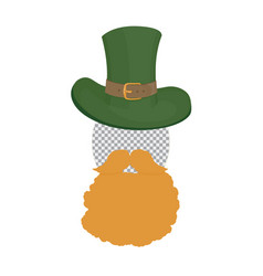 Saint patricks photo template green hat with vector