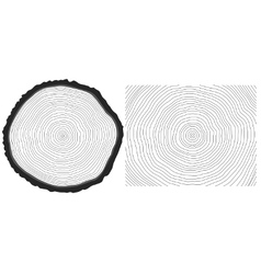 Saw cut pine tree trunk and tree rings background vector image