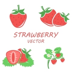 flat strawberry icons set vector image vector image