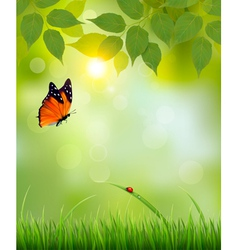 Nature summer background with leaves and grass vector image vector image
