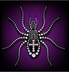Brilliant spider vector image vector image