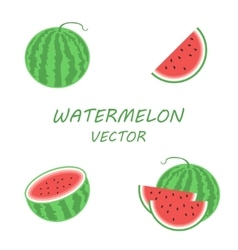 flat watermelon icons set vector image