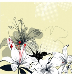background with white lily flowers vector image