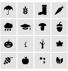 black autumn icon set vector image