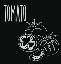 Chalkboard ripe tomato vegetable vector