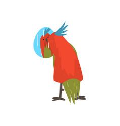 Cute bird lookig at mirror funny birdie cartoon vector