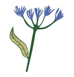 hand drawn vintage floral element decorative plant vector image