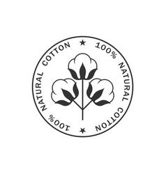 Natural cotton vector
