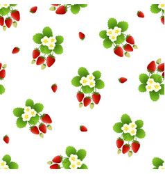 Red strawberry and flower seamless on white vector