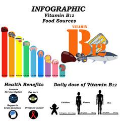 Vitamin b12 infographic health benefit vector