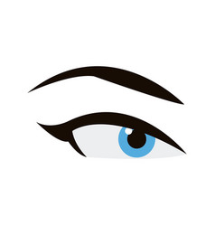 woman blue eye eyebrows makeup image vector image