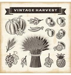 Vintage harvest set vector image vector image