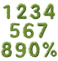 Green Grass Alphabet Numbers Set vector image