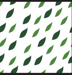 green leaves seamless pattern on a white vector image vector image