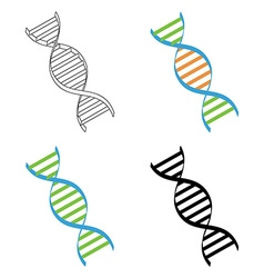 Dna set vector