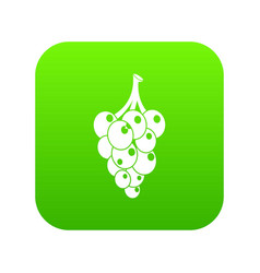 Grape icon green vector